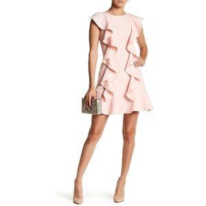 NWT Minuet Pink Ruffle Dress MED